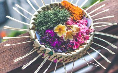 iRest®ヨガ・二ドラ瞑想 経験者のインタビュー記事