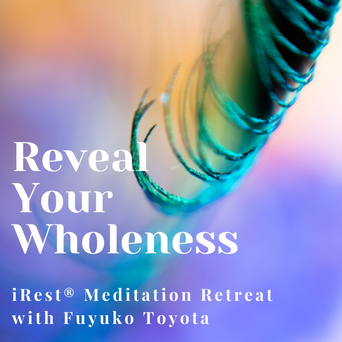 Reveal Your Wholeness 4-Day Retreat